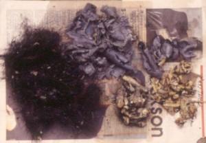 ヒョウの吐き戻しを洗い流したあと、ゴリラの毛(左)、皮膚(中央上部)、爪を含む指の皮(右上部)、骨(右下)が発見される © 西原智昭・撮影