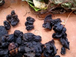 燻製されたゴリラの肉(上方部に手足の肉が見える)© 西原智昭