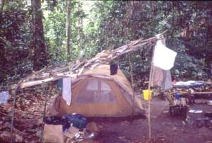 森の中でのテント生活©西原智昭