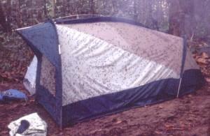 テントに群がったハエの集団©西原智昭