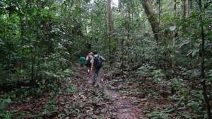 森を歩くときは時には強行軍である©西原恵美子