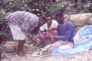 ゴリラの糞を分析する研修中のコンゴ人若手研究者@西原智昭