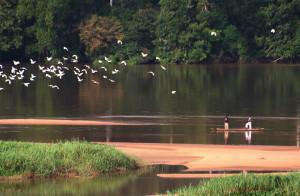 川には至る所に浮き草などが生い茂っている©西原恵美子
