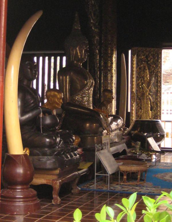 写真231:タイの仏教に基づき寺院では象牙が祀らていることが多い©西原智昭