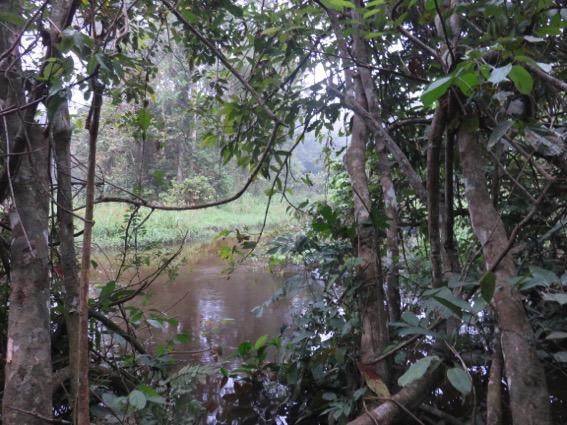 写真250:こうした大きな川を二箇所渡る;浅ければ水かさは腰くらいまで浸かる©西原智昭
