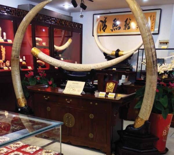 写真256:中国で売られている装飾品などの象牙製品(文献2より引用)