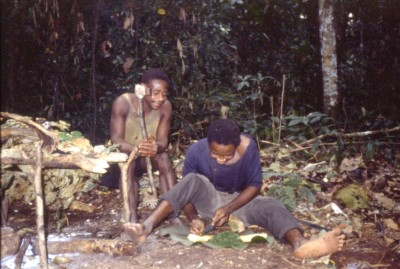 写真276:森の食用の葉を調理のために刻む先住民©西原智昭